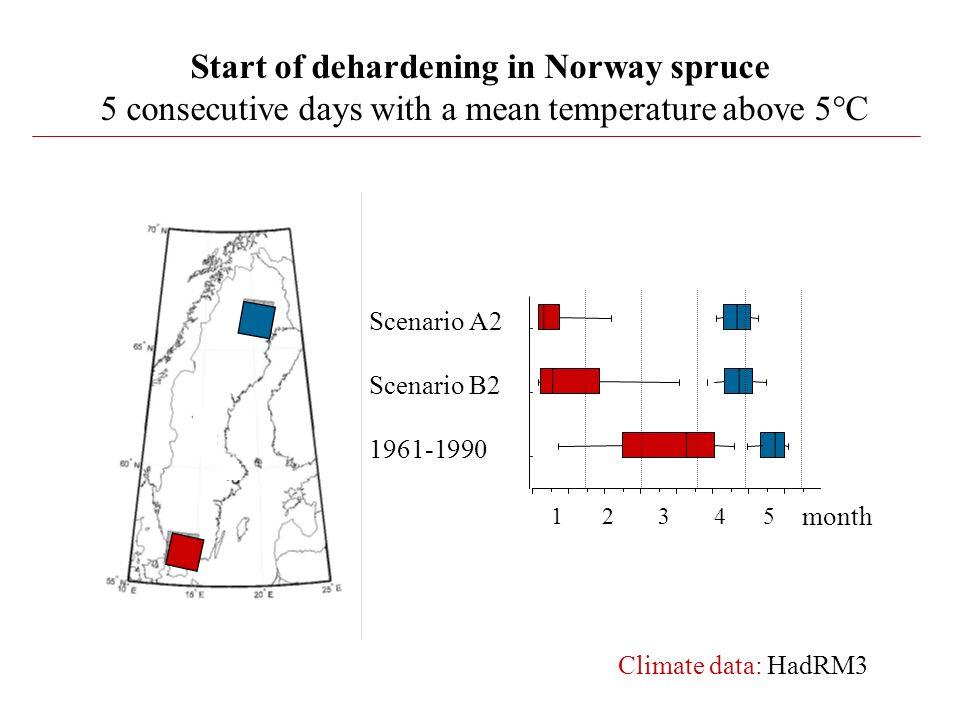 Start of dehardening in Norway spruce