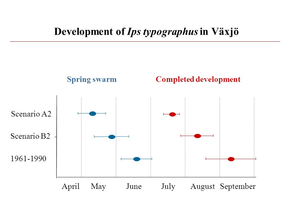 Development of Ips typographus in Växjö
