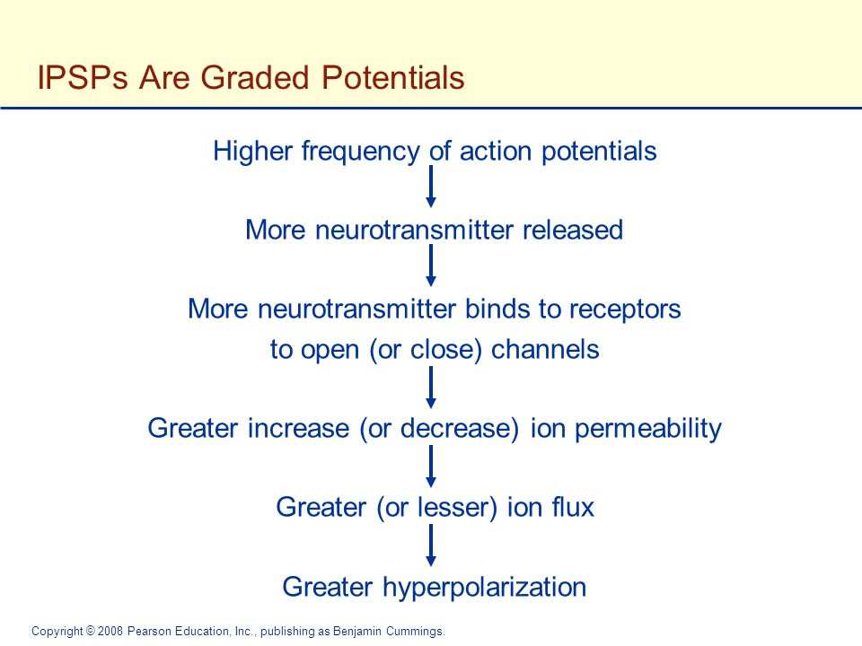 IPSPs Are Graded Potentials