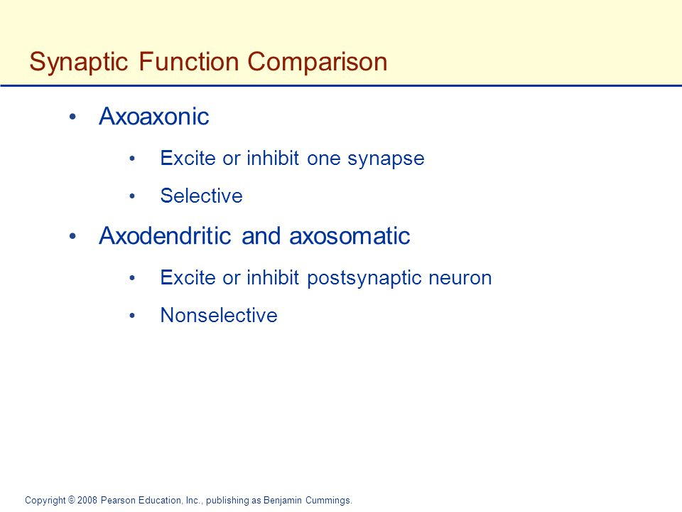 Synaptic Function Comparison