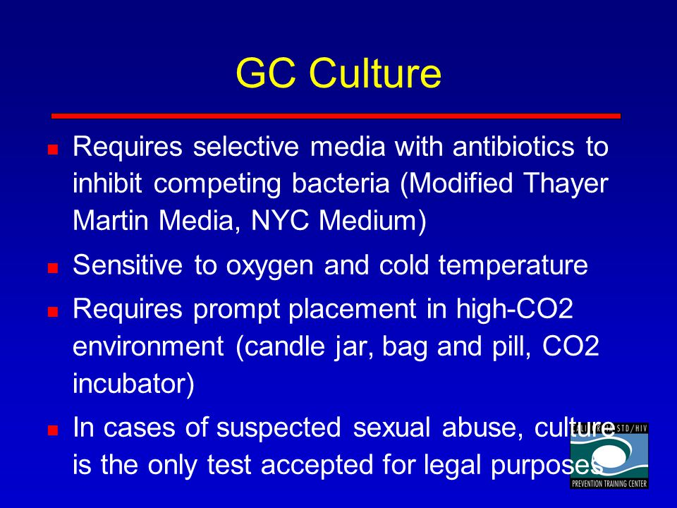 GC Culture Requires selective media with antibiotics to inhibit competing bacteria (Modified Thayer Martin Media, NYC Medium)