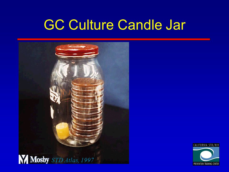 GC Culture Candle Jar STD Atlas, 1997