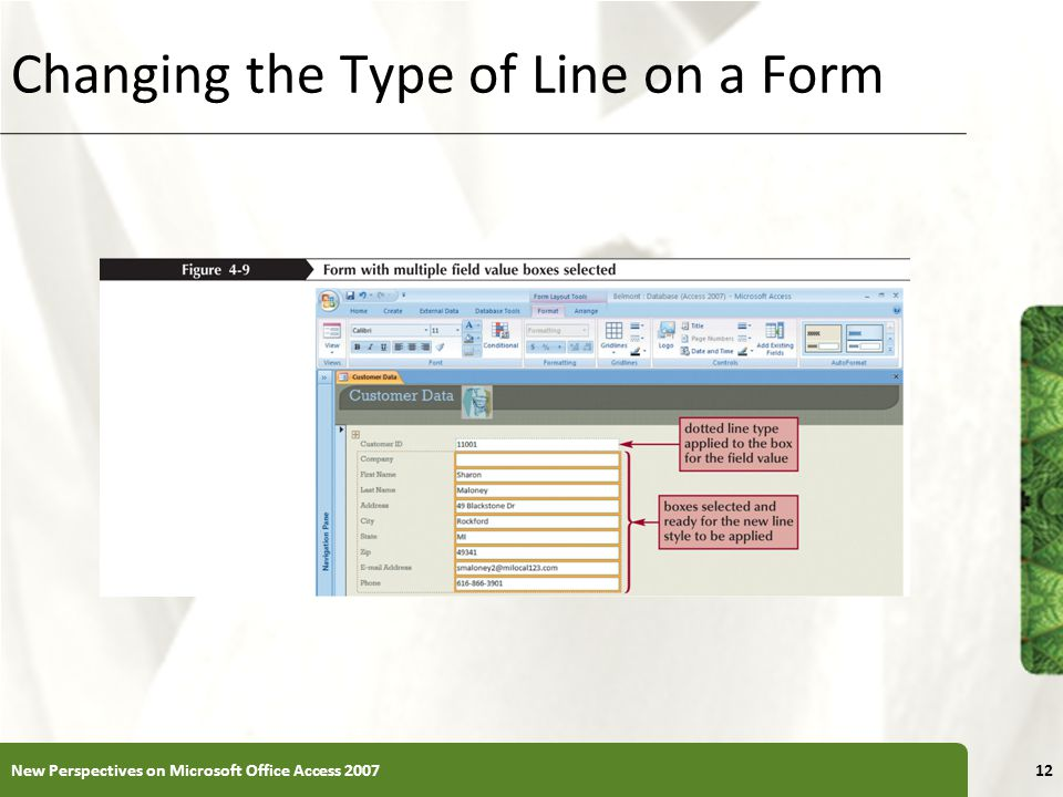 Changing the Type of Line on a Form