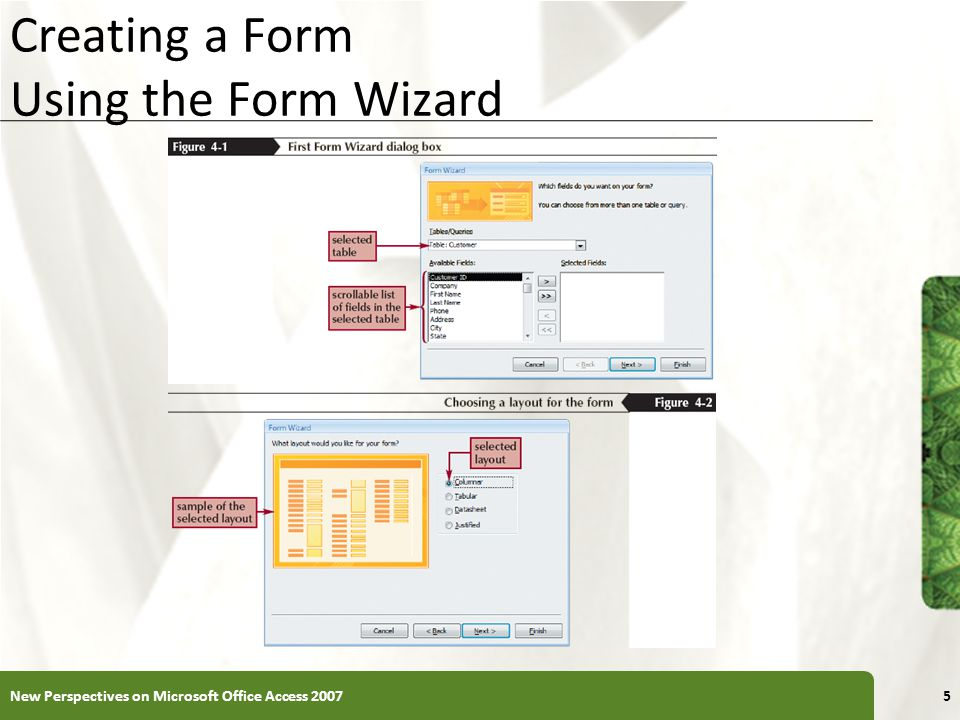 Creating a Form Using the Form Wizard