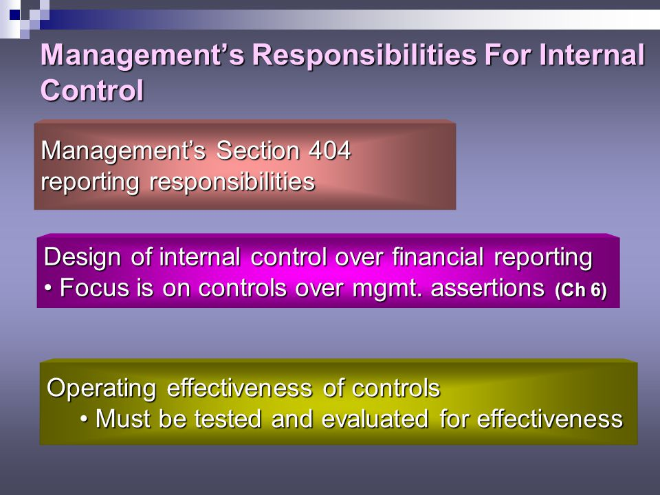 Management's Responsibilities For Internal Control