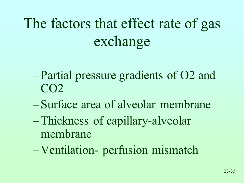 The factors that effect rate of gas exchange