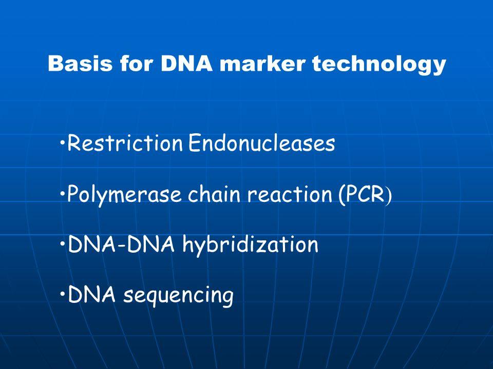Basis for DNA marker technology