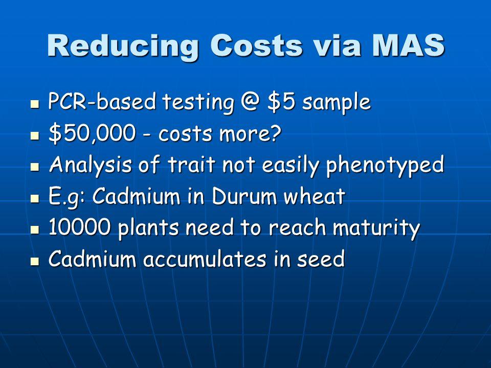 Reducing Costs via MAS PCR-based testing @ $5 sample