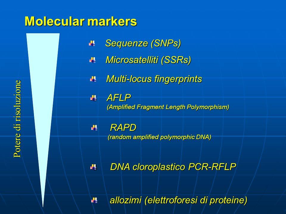 Molecular markers Sequenze (SNPs) Microsatelliti (SSRs)