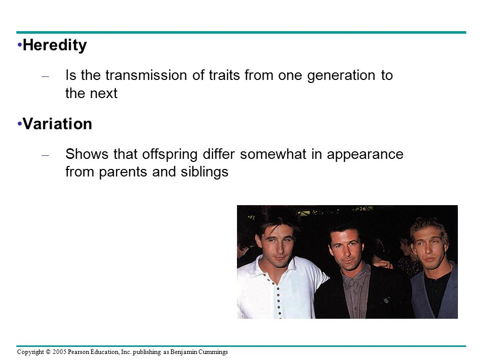 Heredity Is the transmission of traits from one generation to the next. Variation.