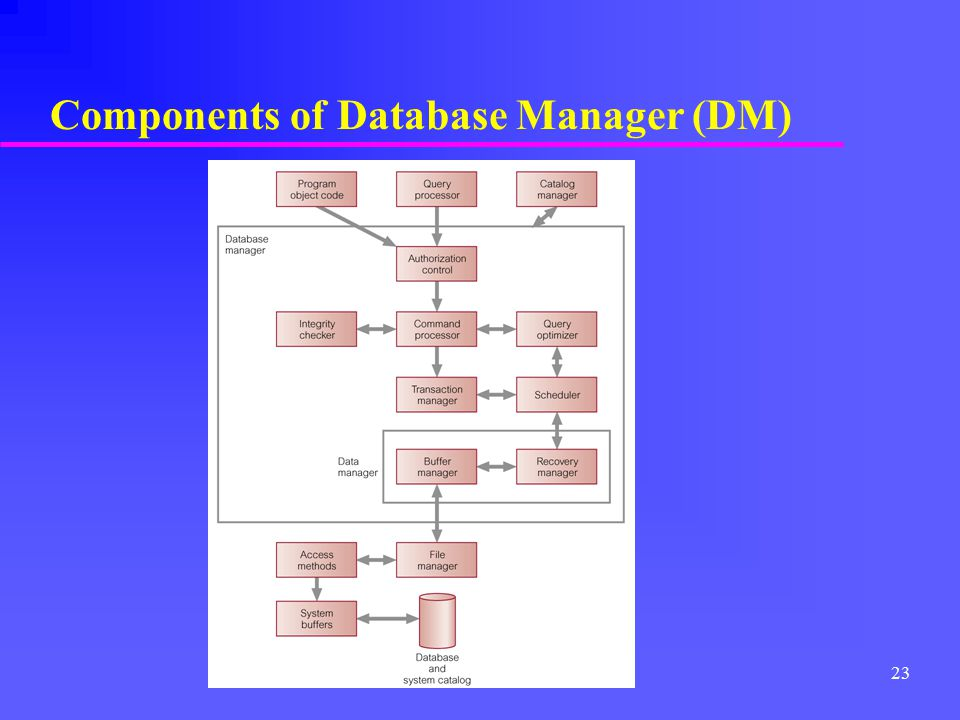 Components of Database Manager (DM)