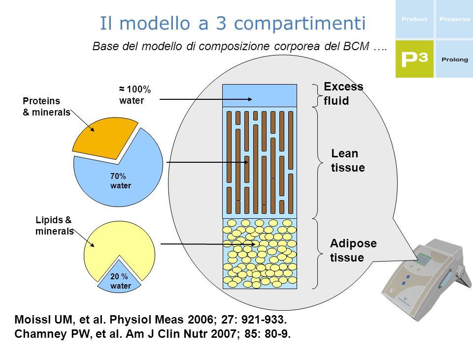 Il modello a 3 compartimenti