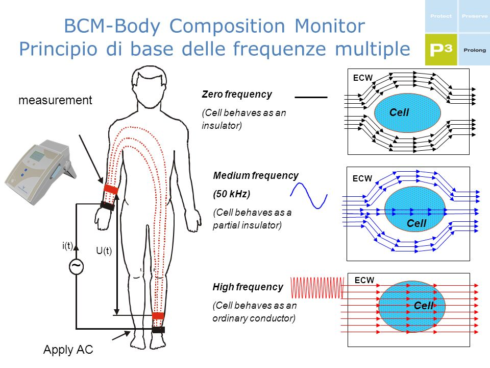 BCM-Body Composition Monitor Principio di base delle frequenze multiple