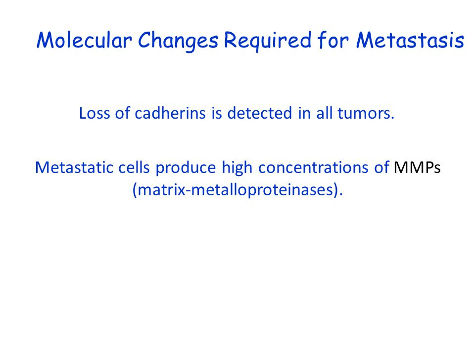 Molecular Changes Required for Metastasis