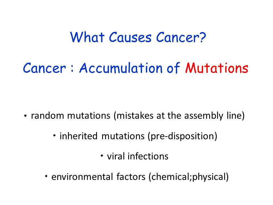 Cancer : Accumulation of Mutations