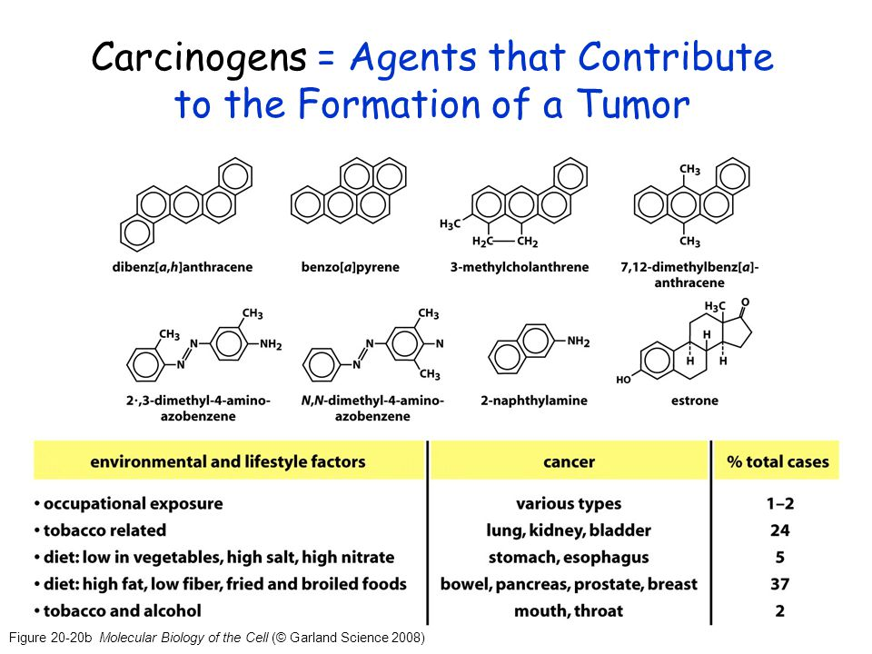 Carcinogens = Agents that Contribute to the Formation of a Tumor