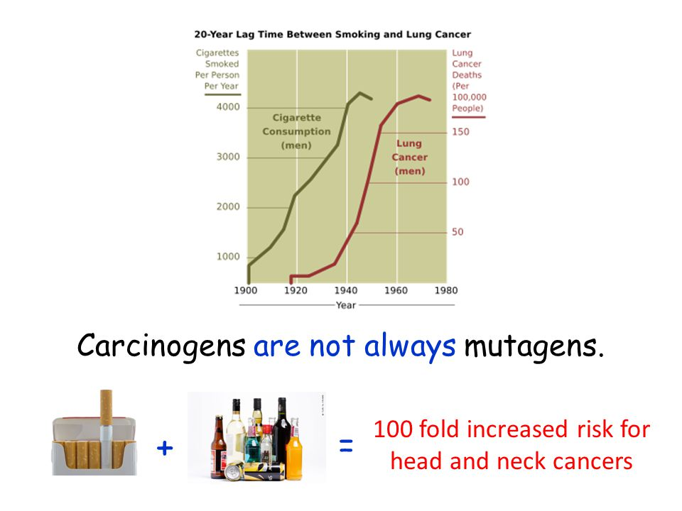 + = Carcinogens are not always mutagens.