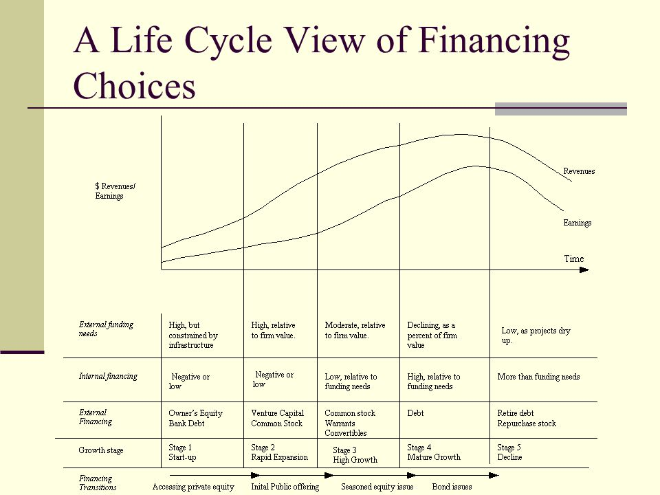 A Life Cycle View of Financing Choices
