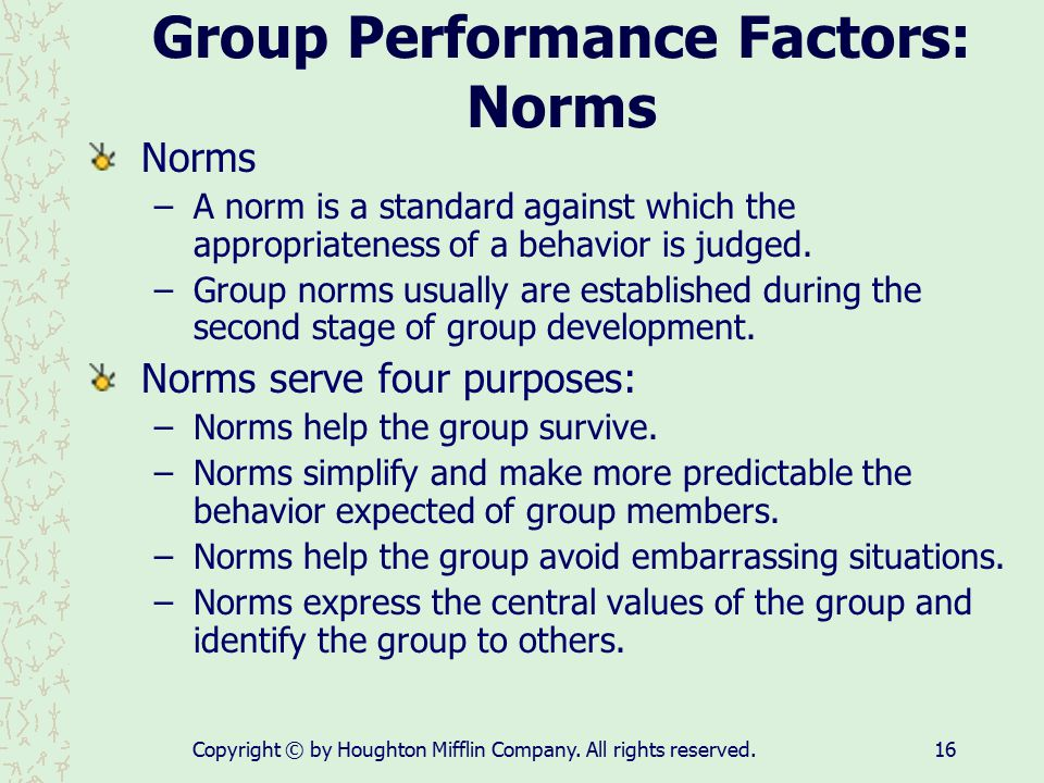 Group Performance Factors: Norms