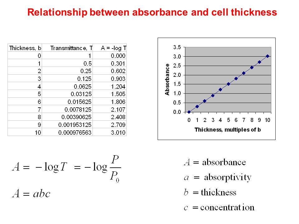 Relationship between absorbance and cell thickness
