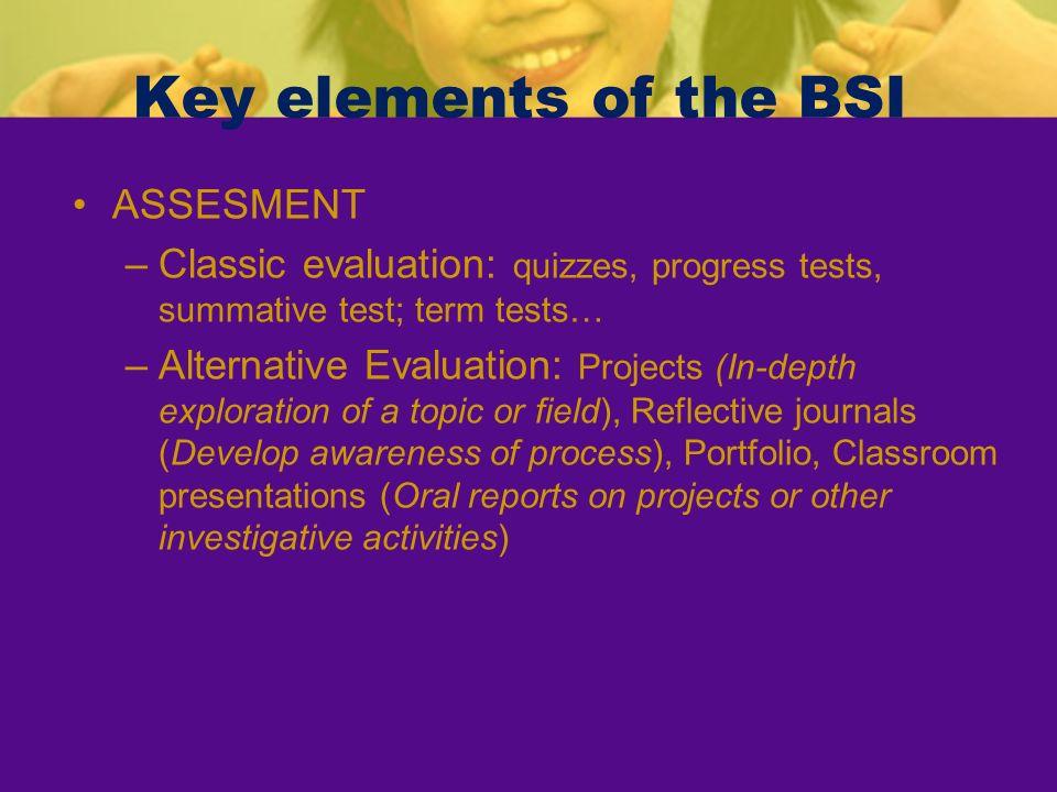 Key elements of the BSI ASSESMENT