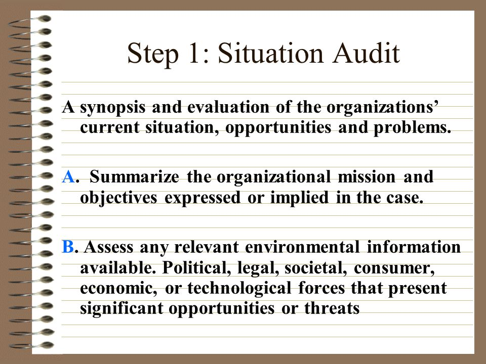 Step 1: Situation Audit A synopsis and evaluation of the organizations' current situation, opportunities and problems.