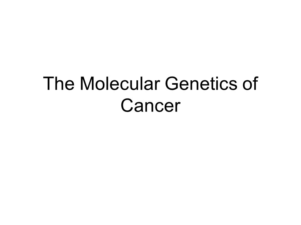 molecular genetics of cancer The basic principles of molecular genetics are reviewed here the material  summarized here is essential to understand topics related to the.