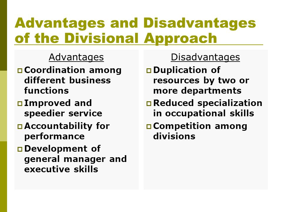 Advantages and Disadvantages of the Divisional Approach