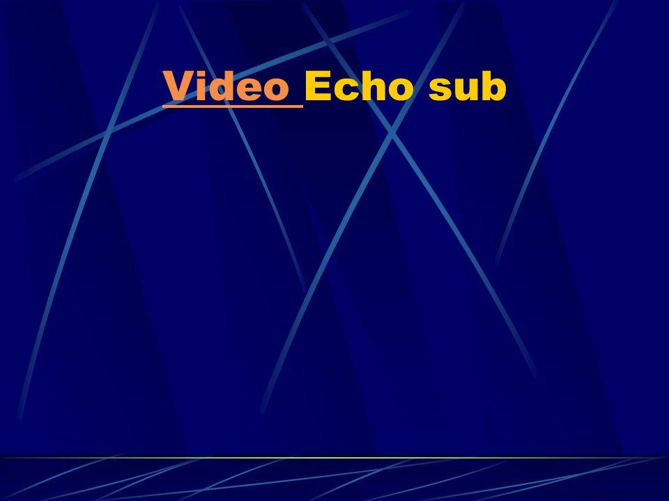 Video Echo sub