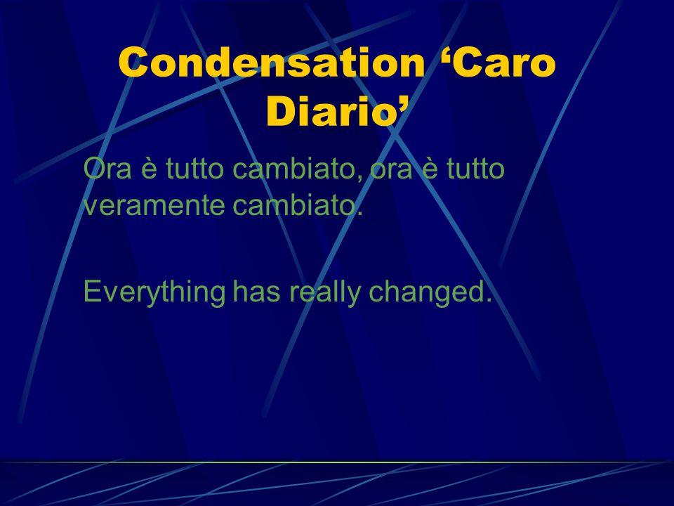 Condensation 'Caro Diario'