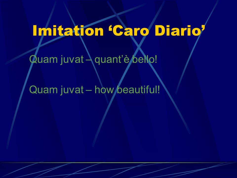 Imitation 'Caro Diario'