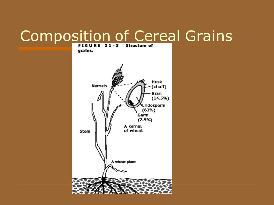 A grain of wheat chapter 3 summary - Research paper Example