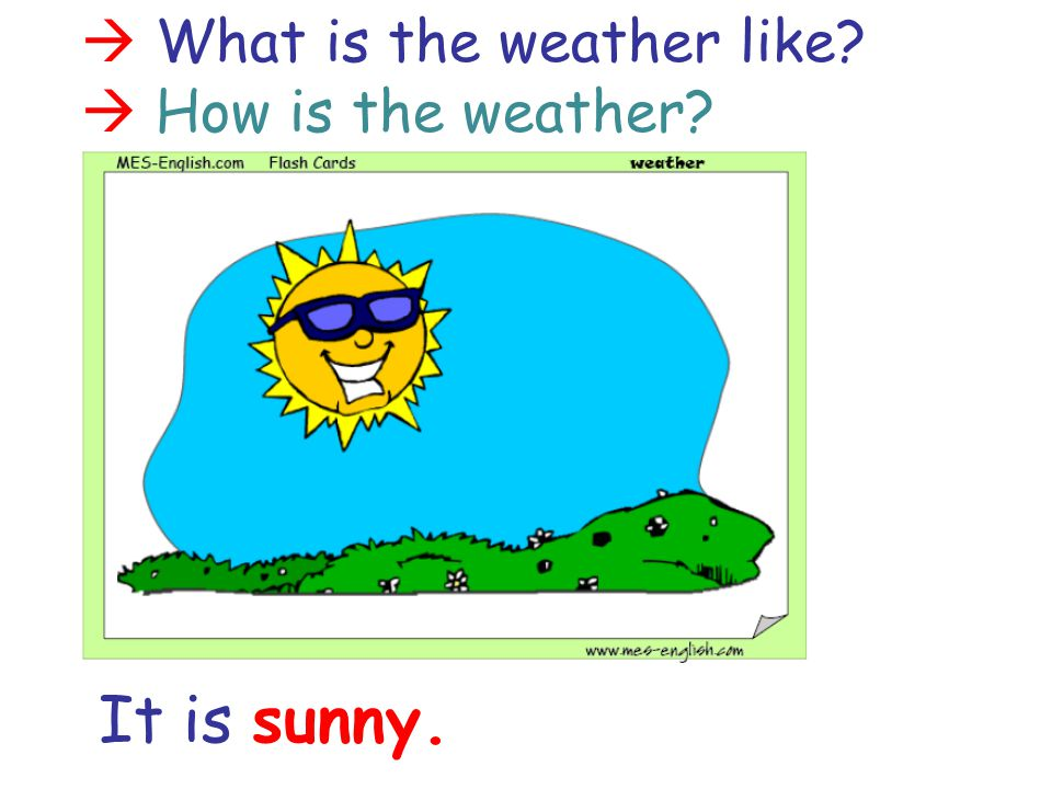  What is the weather like