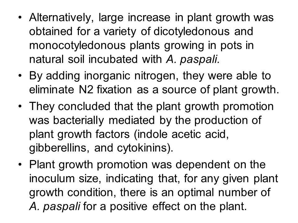 overcrowding plants