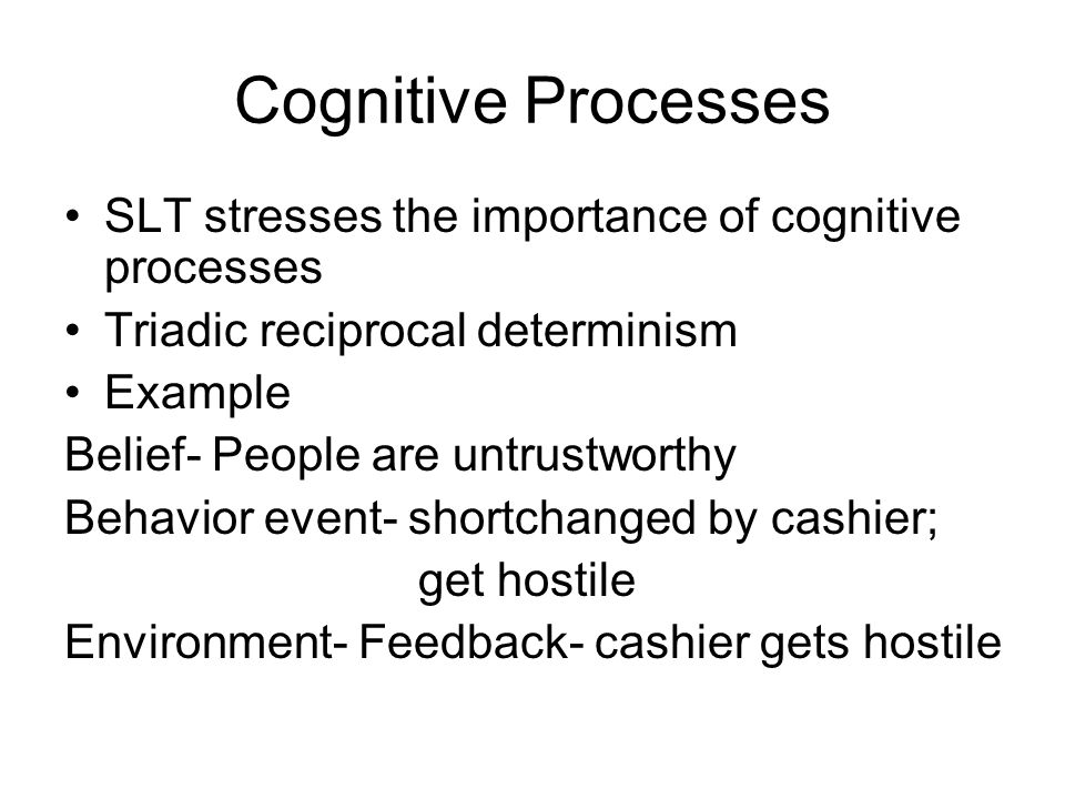 Cognitive Processes SLT stresses the importance of cognitive processes