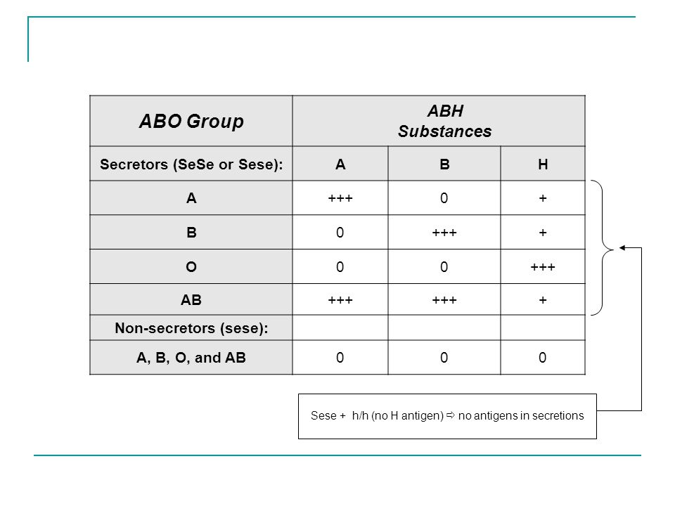 abo blood group system pdf
