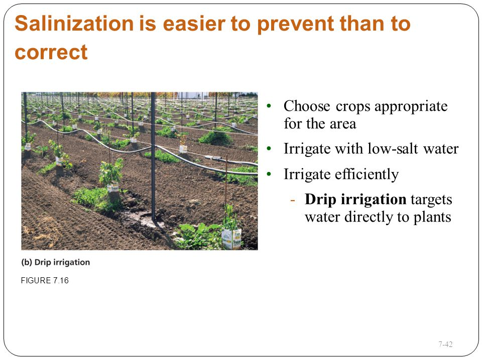 This lecture will help you understand ppt video online for Soil salinization