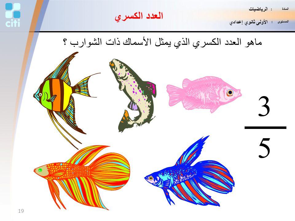 ماهو العدد الكسري الذي يمثل الأسماك ذات الشوارب ؟