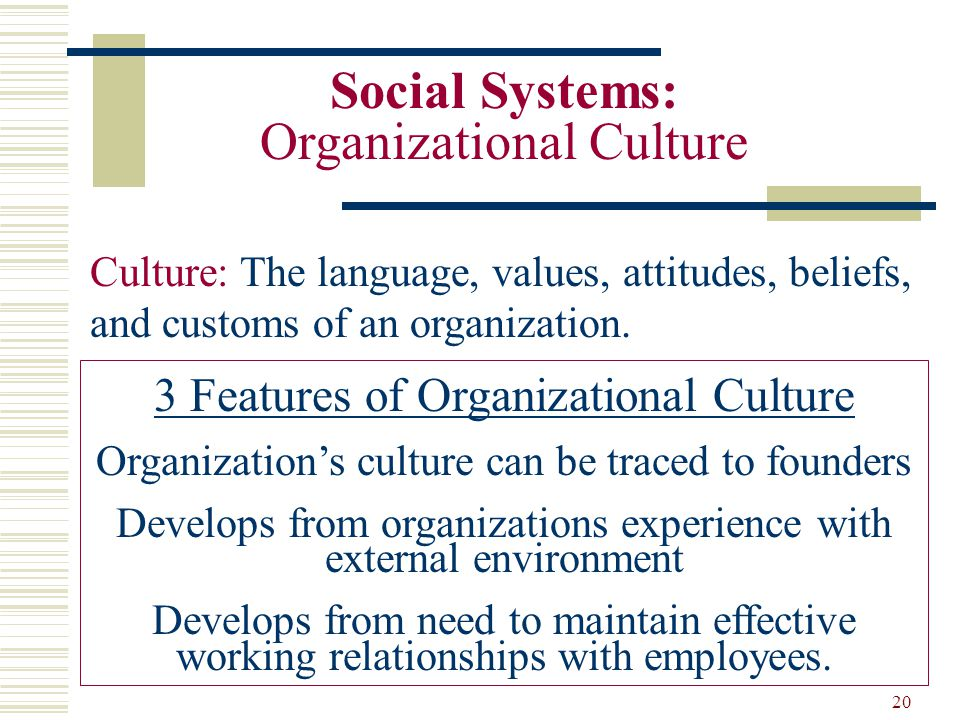 organizations as social systems A system might therefore include entities such as a single cell, a multicellular  organism such as a human, or social organisations of varying sizes from a.