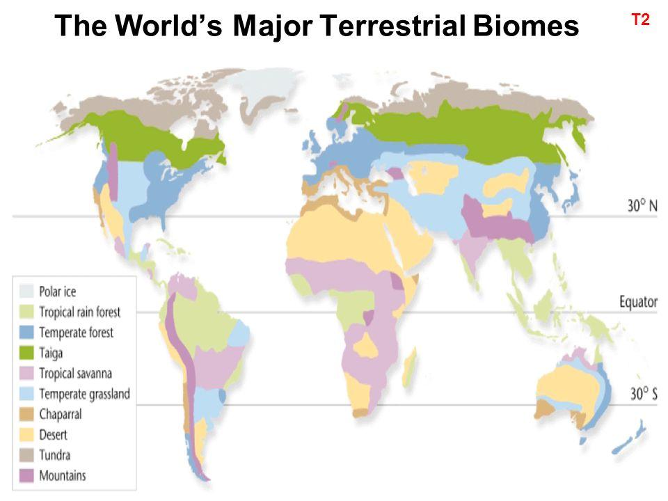 major biomes of the world pdf
