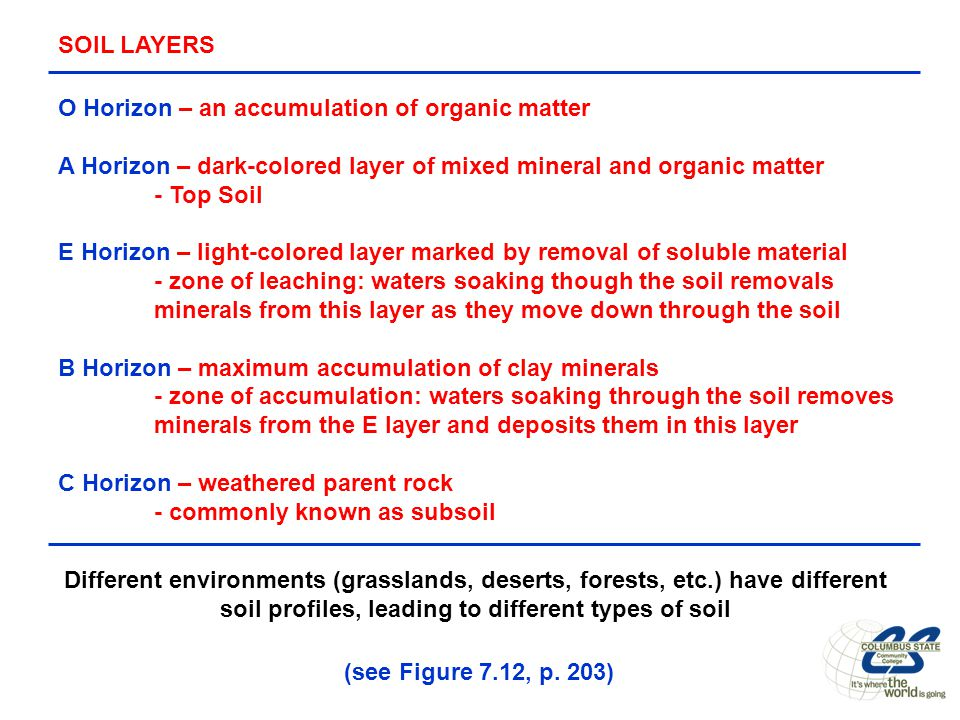 Weathering erosion chapter 7 p ppt download for Soil zone of accumulation