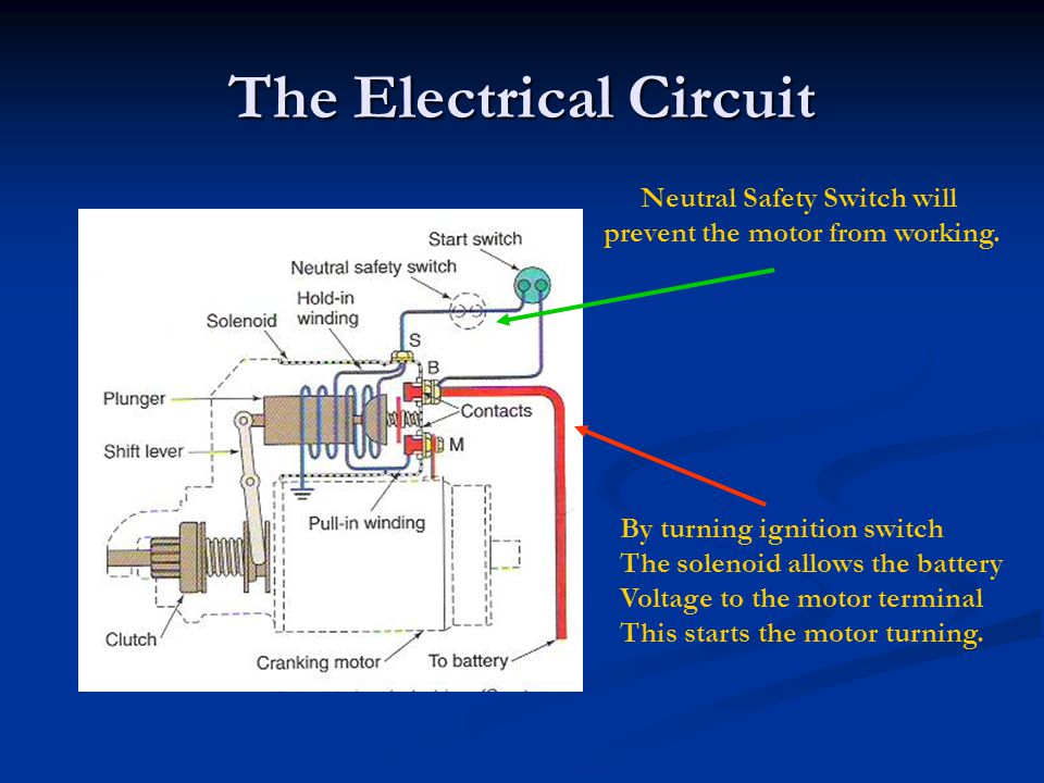 The Electrical Circuit