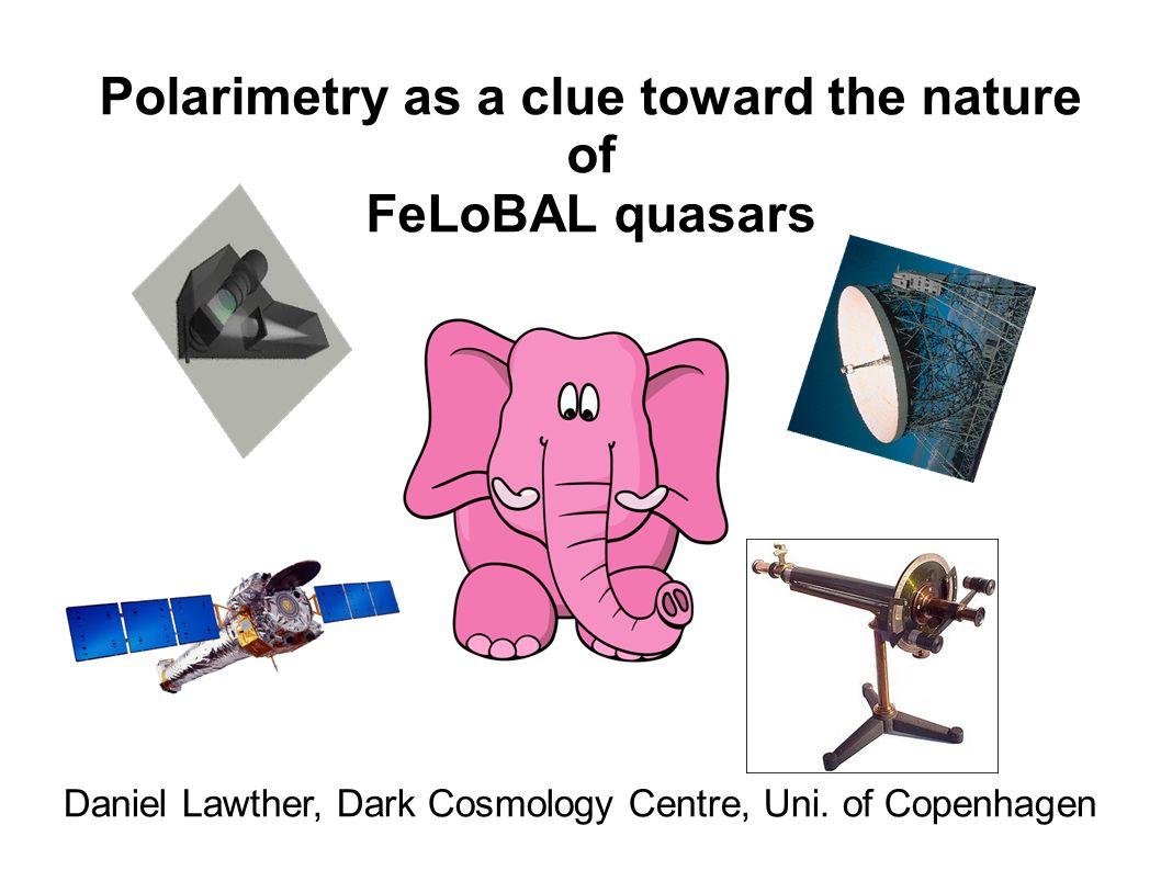 Polarimetry as a clue toward the nature of