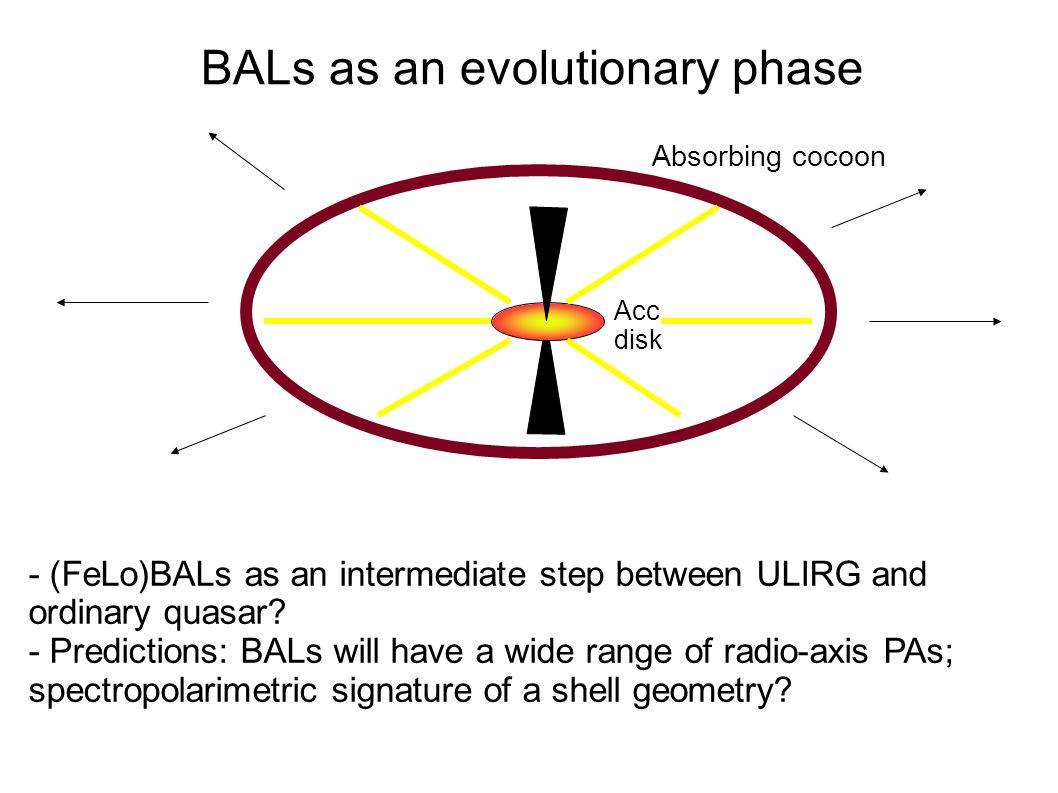 BALs as an evolutionary phase