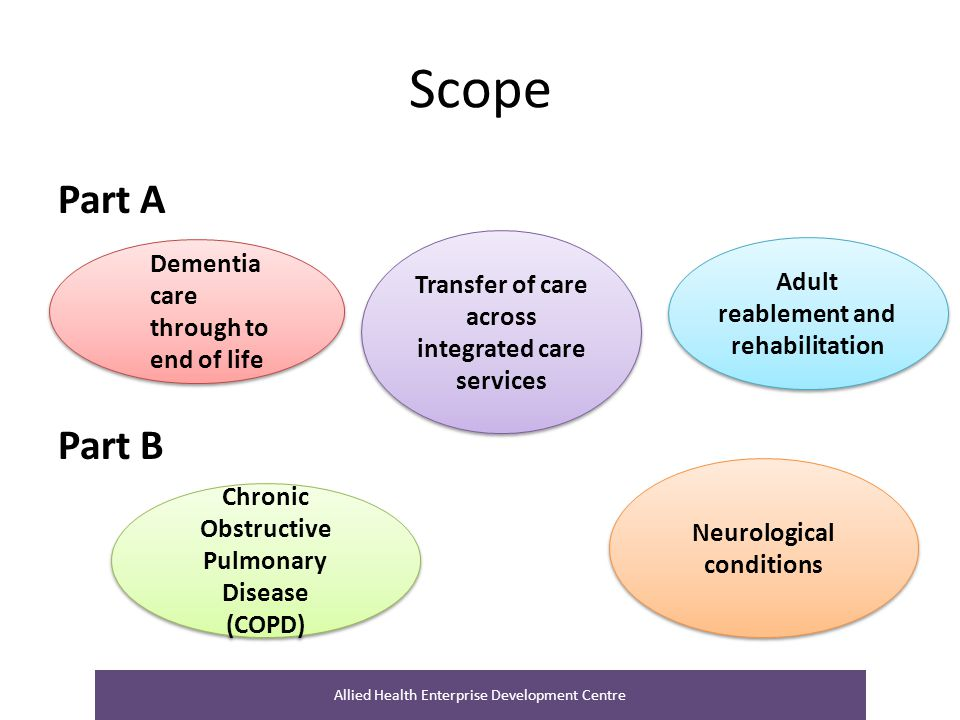 Scope Part A Part B Dementia care through to end of life