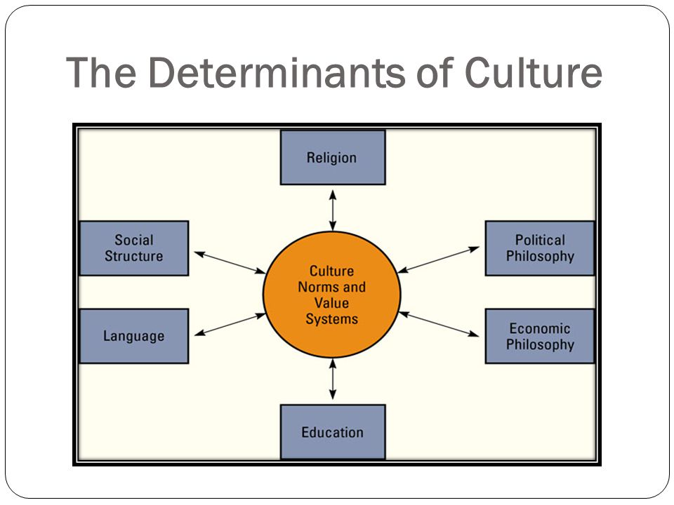 describing the social and cultural dimensions in my organization essay It's the same with writing with any given group of ideas and details, you might use any of a number of principles of organization, and any one of them would help you.