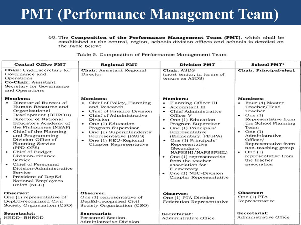 PMT (Performance Management Team)