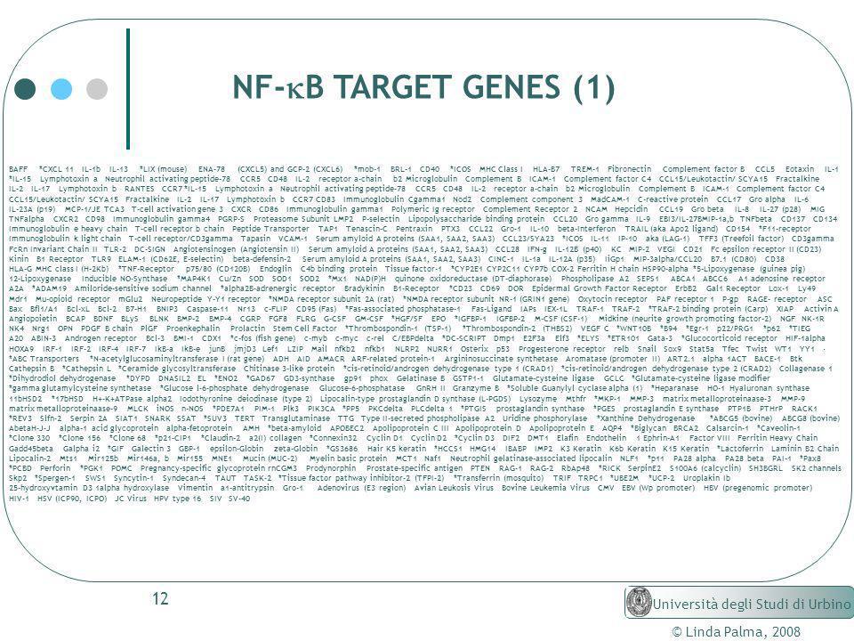 NF-kB TARGET GENES (1) Università degli Studi di Urbino
