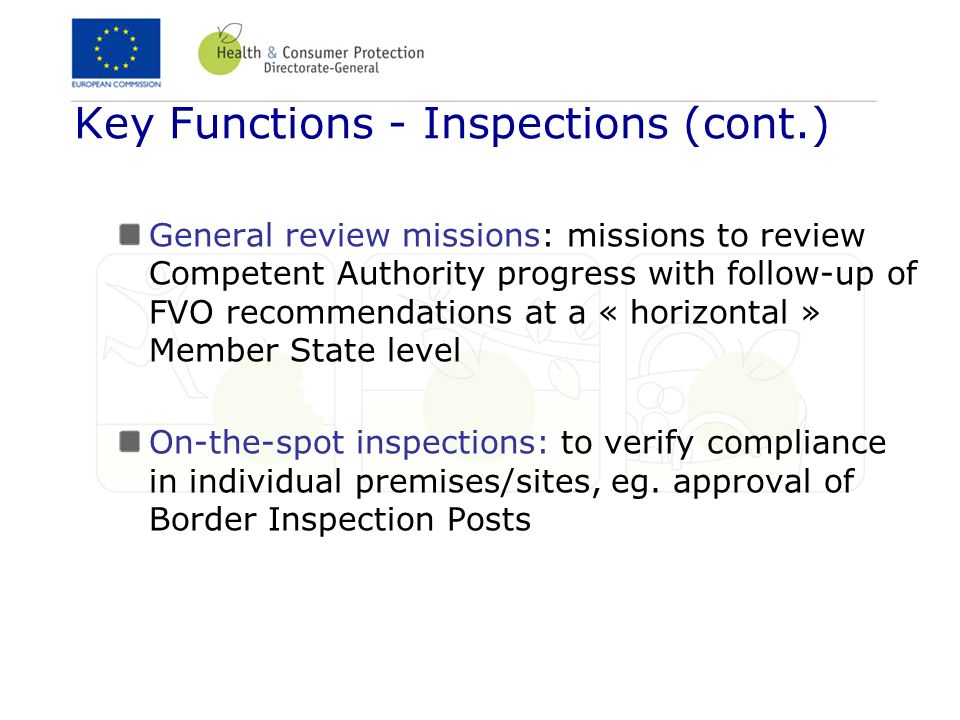 Key Functions - Inspections (cont.)