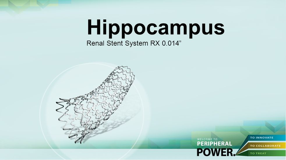 Hippocampus Renal Stent System RX 0.014